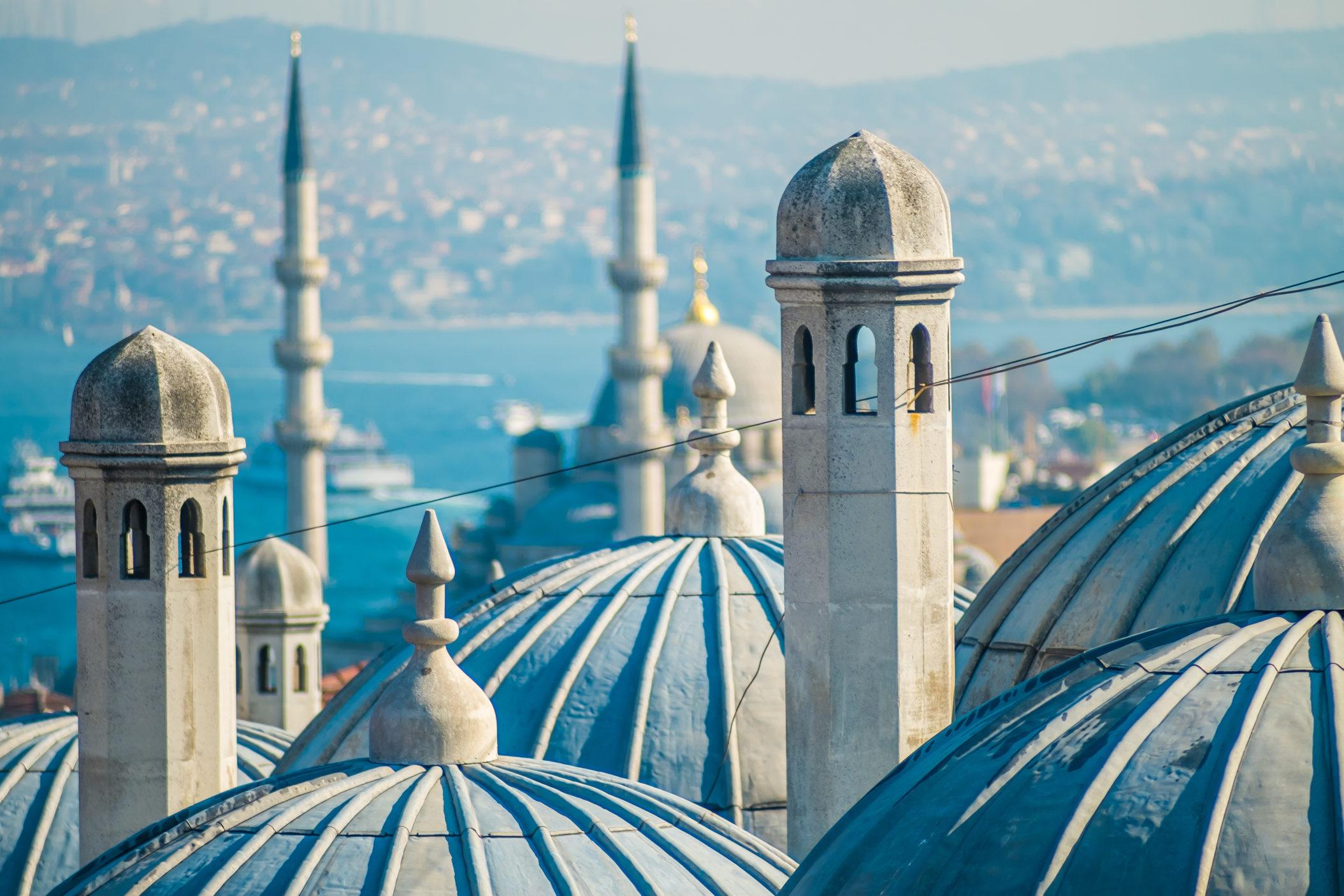 Turkey [Shutterstock]