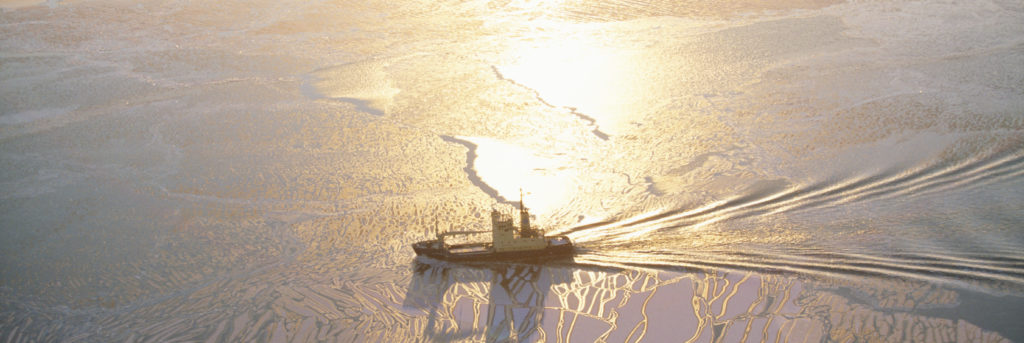 Ship moving in frozen sea - Image