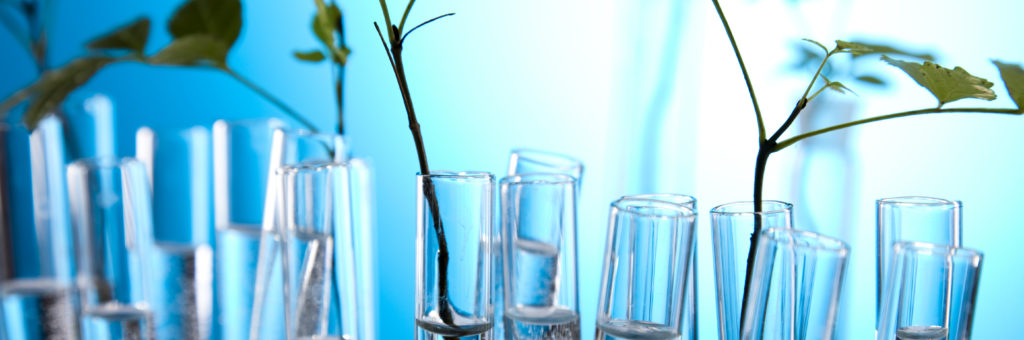 Floral science in laboratory - Image [shutterstock]