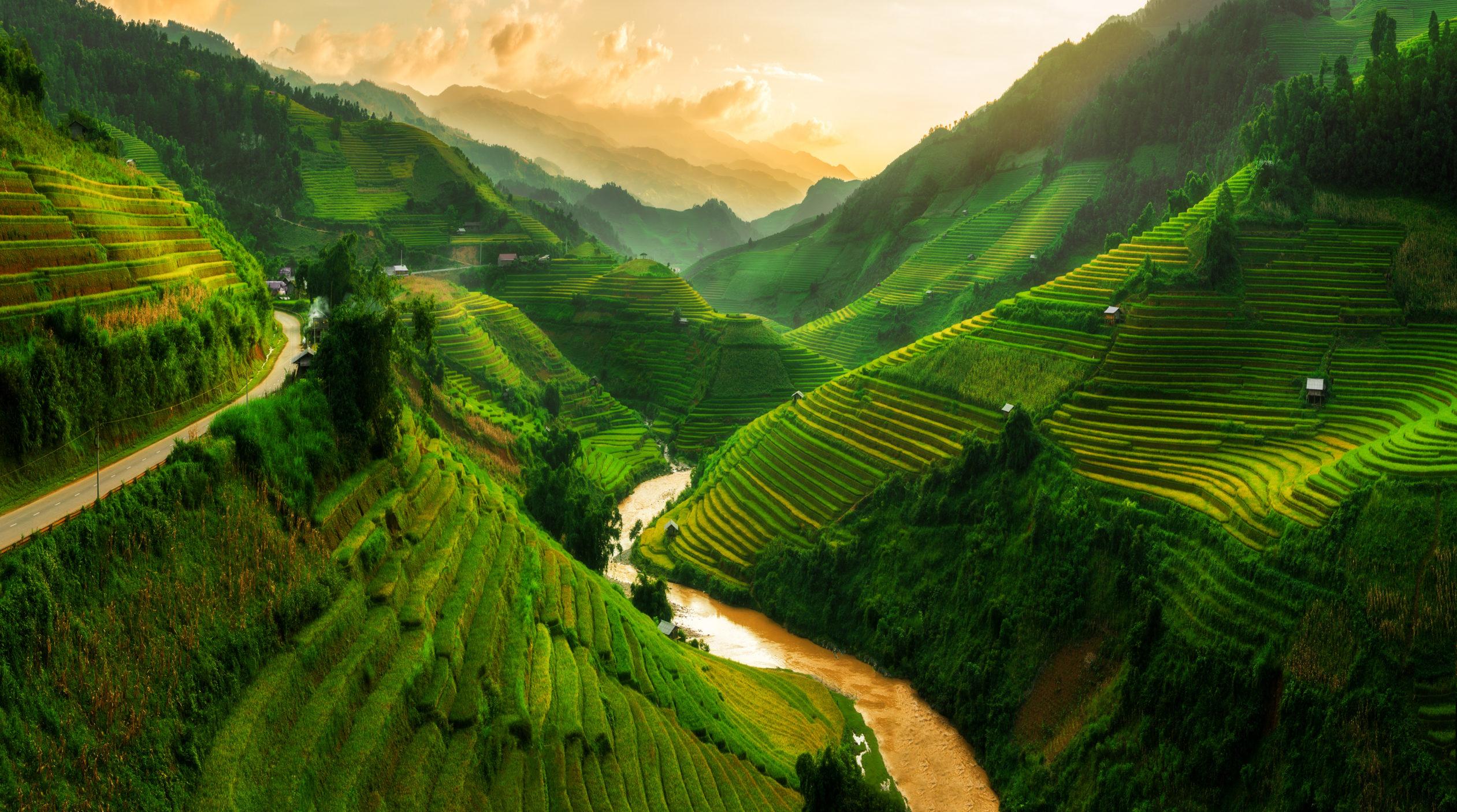 Vietnam [Shutterstock]