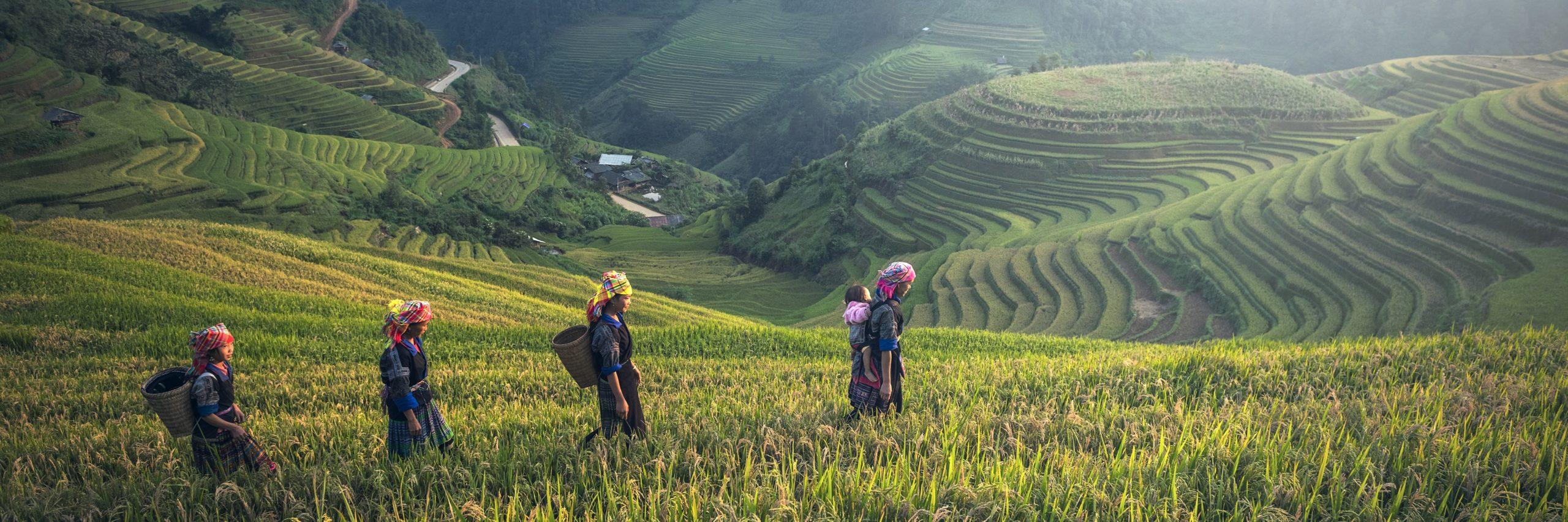 Women walking through rice terraces. (Pixabay; 2016)