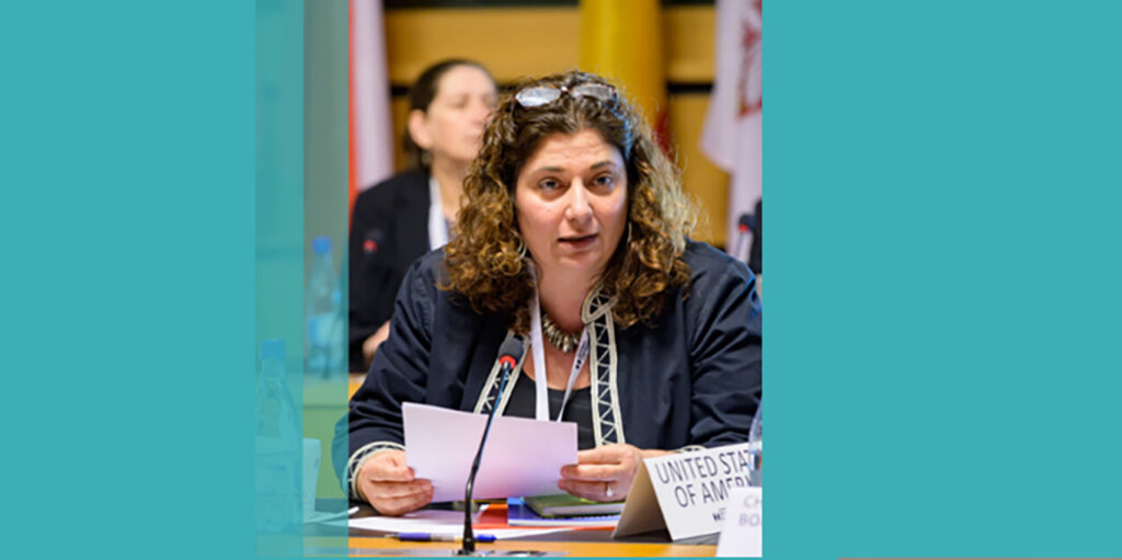 Cherrie Daniels, Special Envoy for Holocaust Issues,led the U.S. delegation to theJune2020plenary of theInternational Holocaust Remembrance Alliance